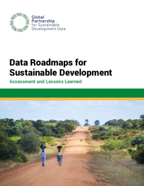 Data Roadmaps for Sustainable Development: Assessment and Lessons Learned